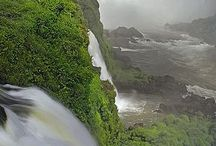 Příroda u nás a ve světě