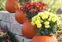 FALL DECORATING / by Debbie Swerdon