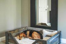 DOG KENNELS & BEDS