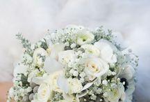 Mariage / Organisation de notre mariage en hiver