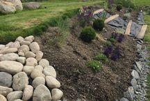 slänt trädgård
