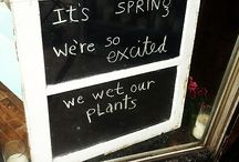 Spring/Easter / by Prairie Bee