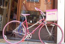 BC Rosetta la sportivetta / Biciclette fixed single speed Bike cycle