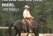 training equines