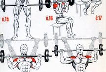 shoulder workouts for men