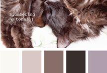 Color Ideas / by Karen Pettit Peavler