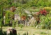 Country garden / www.francescabenza.com
