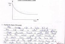 Funny homework answers / 0