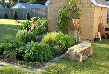 small gardens of desire