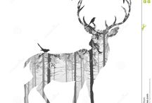Hunting / by Brittany Gerace
