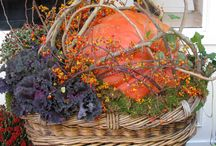 Autumn / by Mary Humlicek