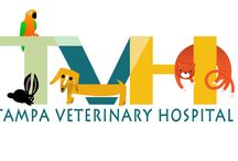 Tampa Veterinary Hospital / TVH veterinarians are highly trained to protect the health of animals and care for their owners.  TVH vets diagnose and treat diseases and other medical problems of many different kinds of pets.  They continually monitor the latest research and treatments to bring the most advanced medical care to their patients and offer owners many different options in caring for their pets.