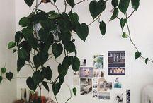 Bytové dekorácie