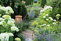 Doris garden