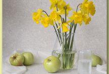 желтые арцисы и тюльпаны