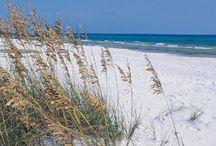 Alternative Florida
