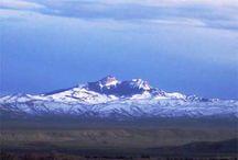Cody, Wyoming / by Cheryl Beckett