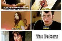 The HP fandom