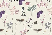 flower&