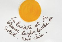 Paroles et paroles... / by Rose Holzer