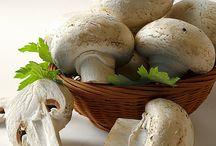 Τα διατροφικά μυστικά που κρύβουν τα μανιτάρια / Τα μανιτάρια είναι τρόφιμο υψηλής διαιτητικής αξίας, πλούσιο σε πρωτεΐνες και αντιοξειδωτικά.