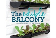 little balcony / by allie gaunt | one handed cooks blog