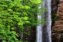 Waterfalls  / I love to find and photograph waterfalls  / by WhiteOak Thomas