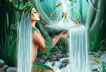 seres da floresta