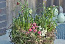 Frühlings deco