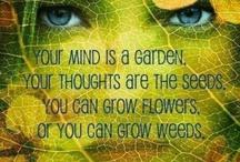 Mindfulness / Inner peace