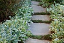 Kryp planter - heller - stein - bed