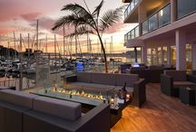 SALT Restaurant & Bar / A new favorite among Marina del Rey restaurants, SALT inspires guests with an innovative take on modern American cuisine. Plus, there's no extra charge for the waterfront views.