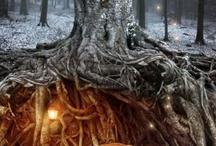 Magic & Fantasy
