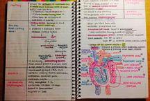 StudyMotivation