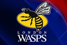 Rugby / news from London wasps and England rugby