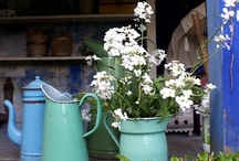 Flowers / by Laura Gardner