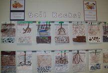 Grade 3: Plants and Soils / by Brenda Davis