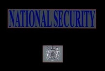 MI6 SIS Secret Intelligence Service = Carroll Global Corporation Trust = US UK National Security Case  / by SKYFALL MI6 Carroll*Trust FBI National Security
