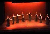 flamenco / by Mekachikika .