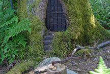 woodland mysterie