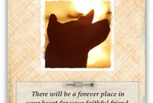 Dog Sympathy Cards / A collection of dog sympathy cards. / by Simple Sympathy