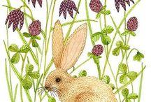 [ illustration ] Easter
