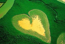 Emerald Isle / So loved Ireland and would return in a heartbeat!! / by Suzan Hollis