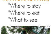 Bucket List Vacation