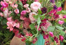 Sweet Pea inspiration / Sweet Peas