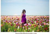 Tulips maternity