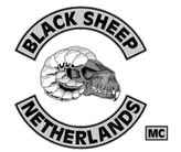 bsmc holland