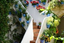 diseño casas