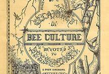 Nos amies les abeilles.