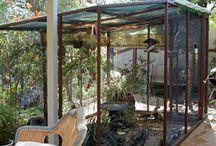 Lovin my Birds / Birds, cages, aviaries & care